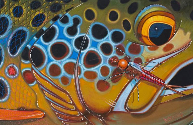 Deyoung Brown Trout Rubberlegs Canvas Print 36x24""