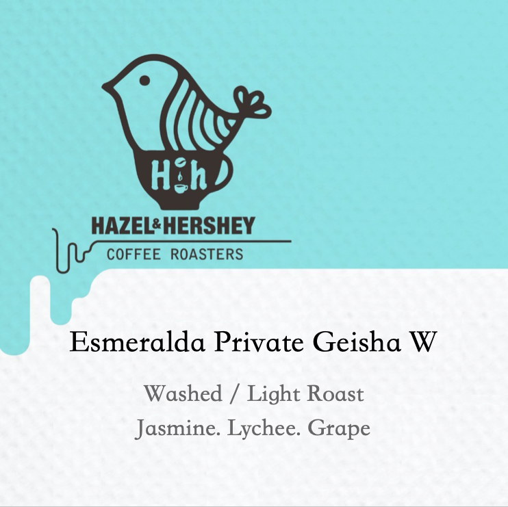 Panama Esmeralda Private Geisha Washed
