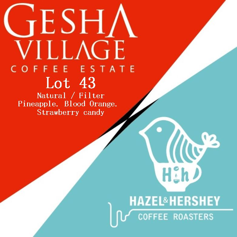 Gesha Village Lot 43