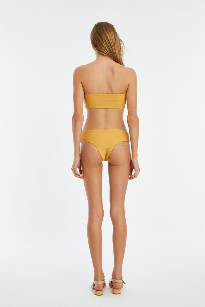 Signature Boyleg Brief - Marigold