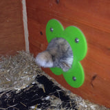 Runaround Green Door attatched to a shed. Showimng a bunny happily going through it. Runaround, Cage, Enclosure, pipe