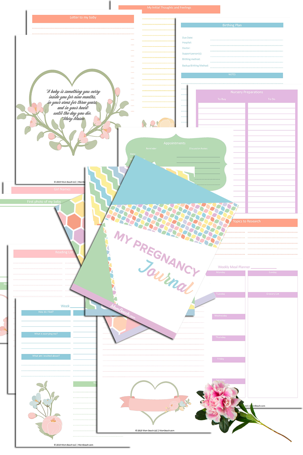 My Pregnancy Journal (189 Pages)