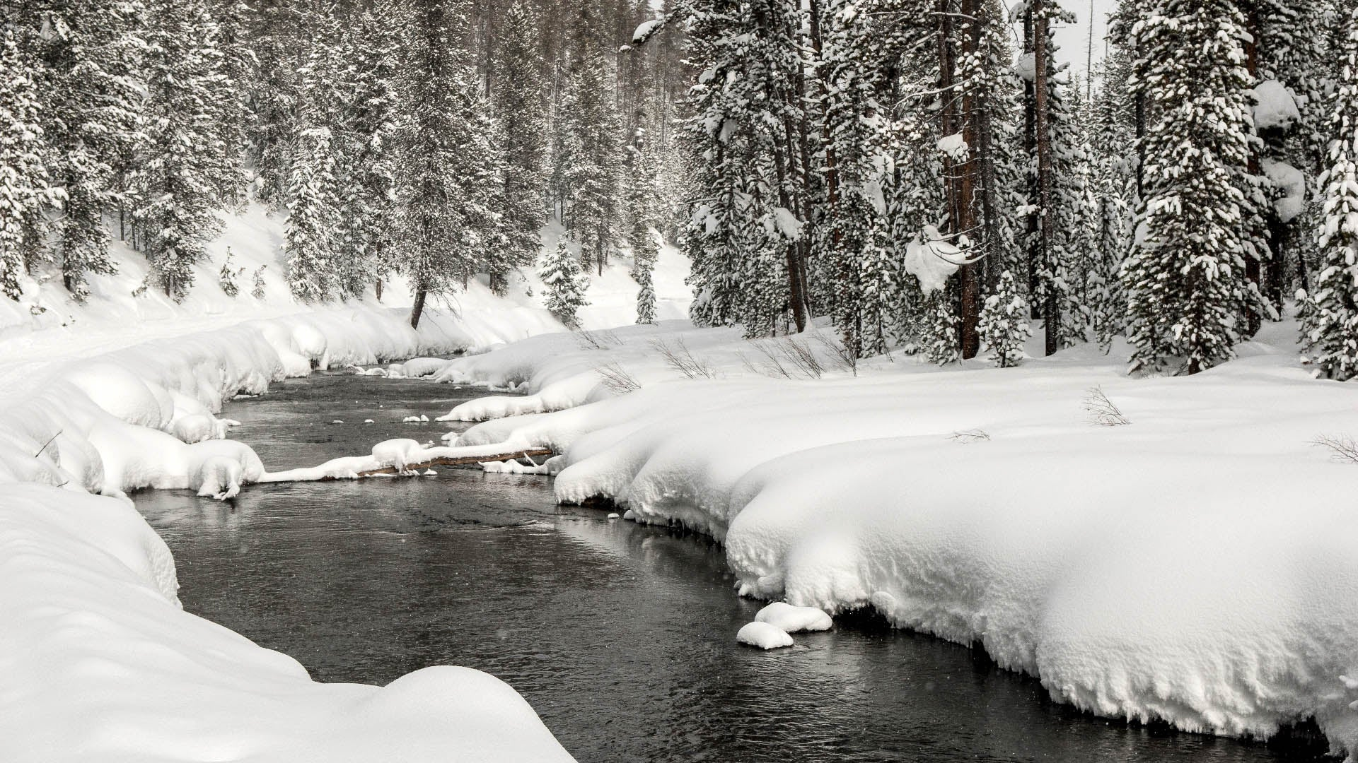 West Yellowstone, Montana, is transformed into a winter wonderland, with lots of outdoor adventures available for those who love the snow.Montana Office of Tourism and Business Development