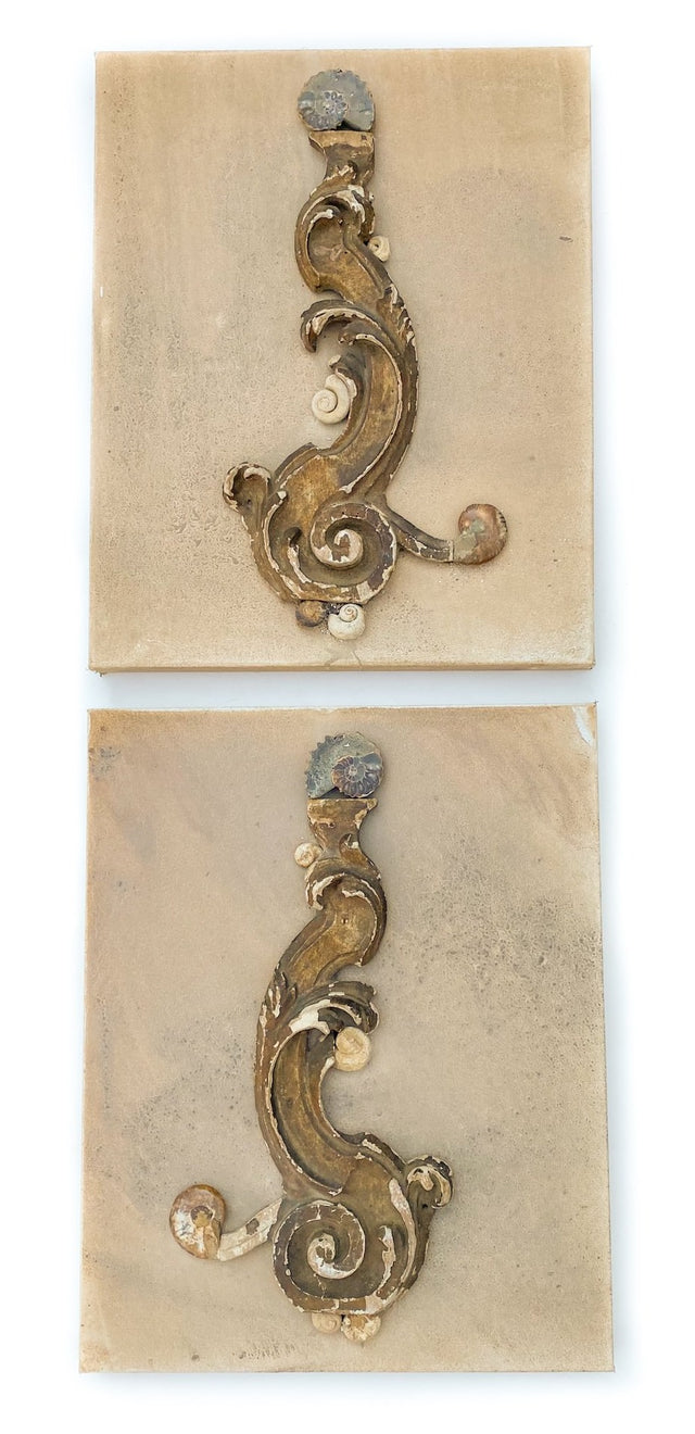 Pair of 18th century Italian scroll fragments with polished and natural ammonites and coordinating shells on 2 hand-painted gallery 1-inch canvases. The canvases are distressed with natural organic pigments. The 18th century fragments originally came from a church in Tuscany. The ammonites emulate the scroll design of the fragment pieces. The Italian artifacts, ammonites, and shells are mounted onto the pigmented canvases and put together to create a pair of 3D sculptural wall pieces. The pair appears to ha