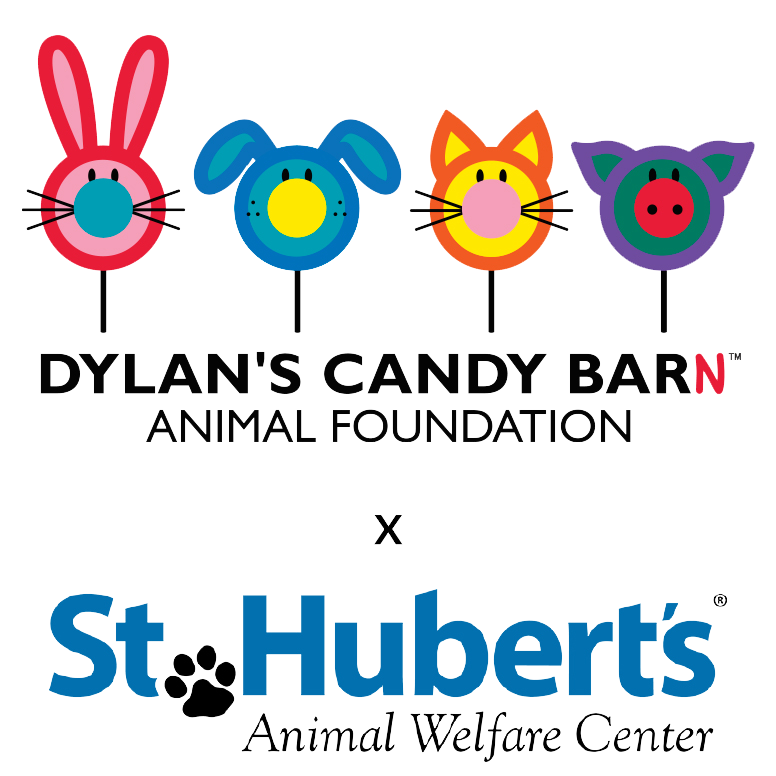 Behind The Scenes with St. Hubert's Animal Welfare Center