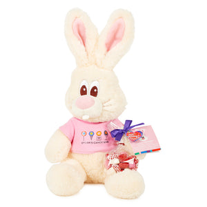 vanilla-valentines-day-bunny-with-sweets-dylans-candy-bar