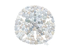 Sand Dollar by Love Rocks Me