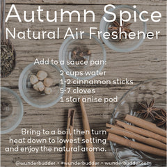 Autumn Spice Natural Air Freshener