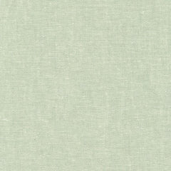 Essex Yarn Dyed Linen in Seafoam from Essex Yarn Dyed Linen by Robert Kaufman House Designers  for Robert Kaufman