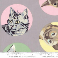 Meow or Never Furball in Grey from Meow or Never by Erin Michaels for Moda