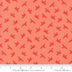 Creekside Soar in Coral from Creekside by Sherri & Chelsi for Moda