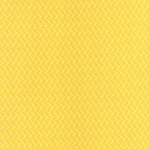 Simply Colorful 2 Hash Marks in Yellow