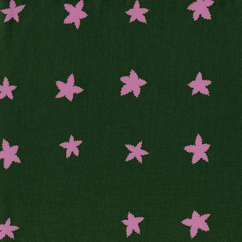 Stars in Evergreen