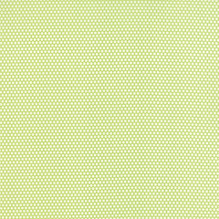 Little Ruby Little Bliss Dot in Green from Little Ruby by Bonnie and Camille for Moda