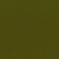 Cotton Supreme Solid in Army Green from Cotton Supreme Solids by RJR House Designers  for RJR