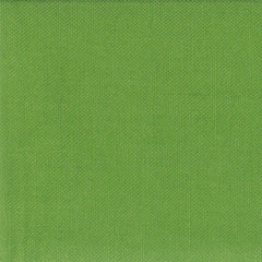 Bella Solid in Fresh Grass from Bella Solids by Moda House Designers  for Moda