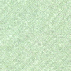 Carkai Coordinates Crosshatch in Mint from Carkai by Carolyn Friedlander for Robert Kaufman
