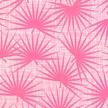 Palm Canyon Palm in Pink