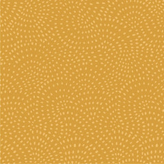 Twist in Gold from Twist by Dashwood Studio House Designers  for Dashwood Studio
