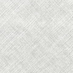 Hatch in Metallic Silver and White from Timeless Treasures Basics by Timeless Treasures House Designers  for Timeless Treasures