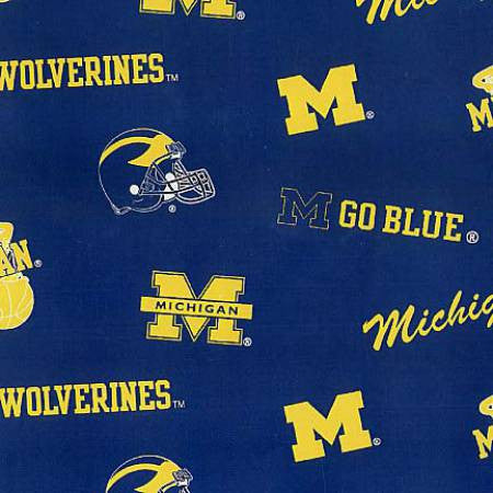 University of Michigan Logos in Maize and Blue