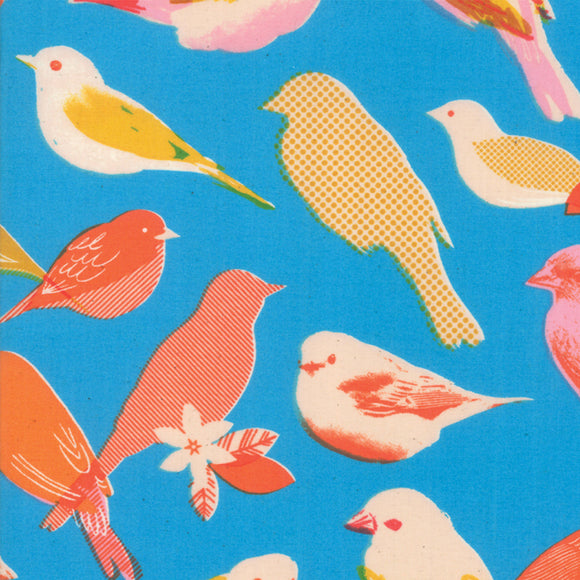 RS0002-12 Social Chirp in Bright Blue by Melody Miller for Ruby Star Society from Pink Castle Fabrics