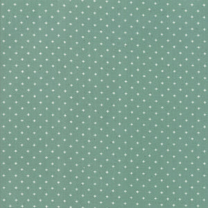 RS4005 33 Ruby Star Society Add It Up in Soft Aqua by Alexia Marcelle Abegg for Ruby Star Society from Pink Castle Fabrics