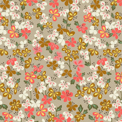 Suffolk Garden Sweet William in Taupe from Suffolk Garden by Dashwood Studio House Designers  for Dashwood Studio