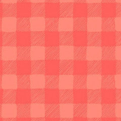 Trail Mix Gingham in Coral from Trail Mix by Rae Ritchie for Dear Stella