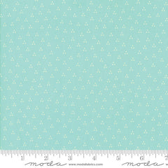 Moda Desert Bloom Spring in Aqua from Moda Desert Bloom by Sherri & Chelsi for Moda