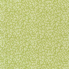 Calico in Green from Spring Street by Dear Stella House Designers  for Dear Stella