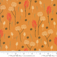 Moda Desert Bloom Dandelion in Sunglow from Moda Desert Bloom by Sherri & Chelsi for Moda