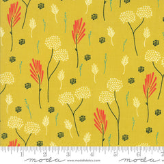 Moda Desert Bloom Dandelion in Maize from Moda Desert Bloom by Sherri & Chelsi for Moda