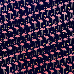 Flamingos in Navy