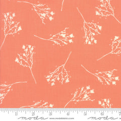 Moda Desert Bloom Blossom in Coral from Moda Desert Bloom by Sherri & Chelsi for Moda