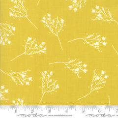 Moda Desert Bloom Blossom in Maize from Moda Desert Bloom by Sherri & Chelsi for Moda