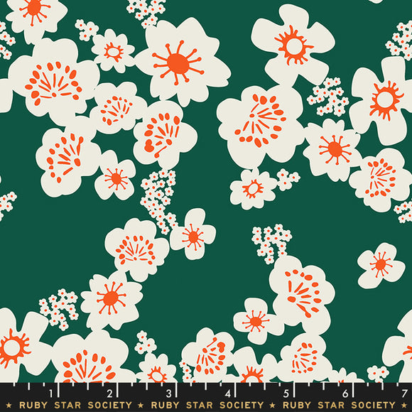 RS5002 13 Aviary Hana in Jade by Melody Miller, Rashida Coleman-Hale and Alexia Marcelle Abegg for Ruby Star Society from Pink Castle Fabrics