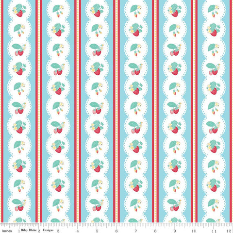 Shabby Strawberry Stripe in Blue