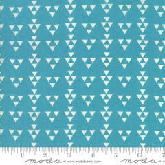 Moda Desert Bloom Delta in Turquoise from Moda Desert Bloom by Sherri & Chelsi for Moda