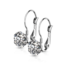 Sweet Bliss - Women's Round CZ with Lever Back Stainless Steel Earrings