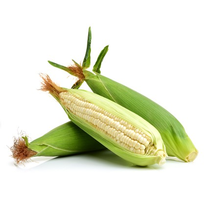 Quanfa Organic Imported Vegetables Sweet Corn