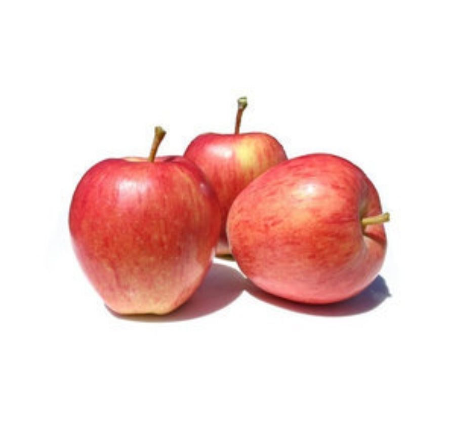 Red Apple (Royal Gala)