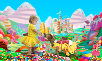 Adventures in Candyland