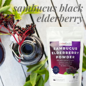 Sambucus Elderberry Powder