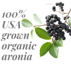 Dried Aronia Berries