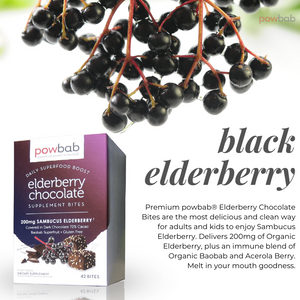 Elderberry Chocolate Bites