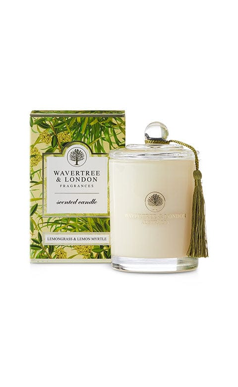 PLAN36.5 PORE SHOT MAGIC NOSE PACK CAT 3PCS