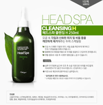 Head Spa Cleansing H