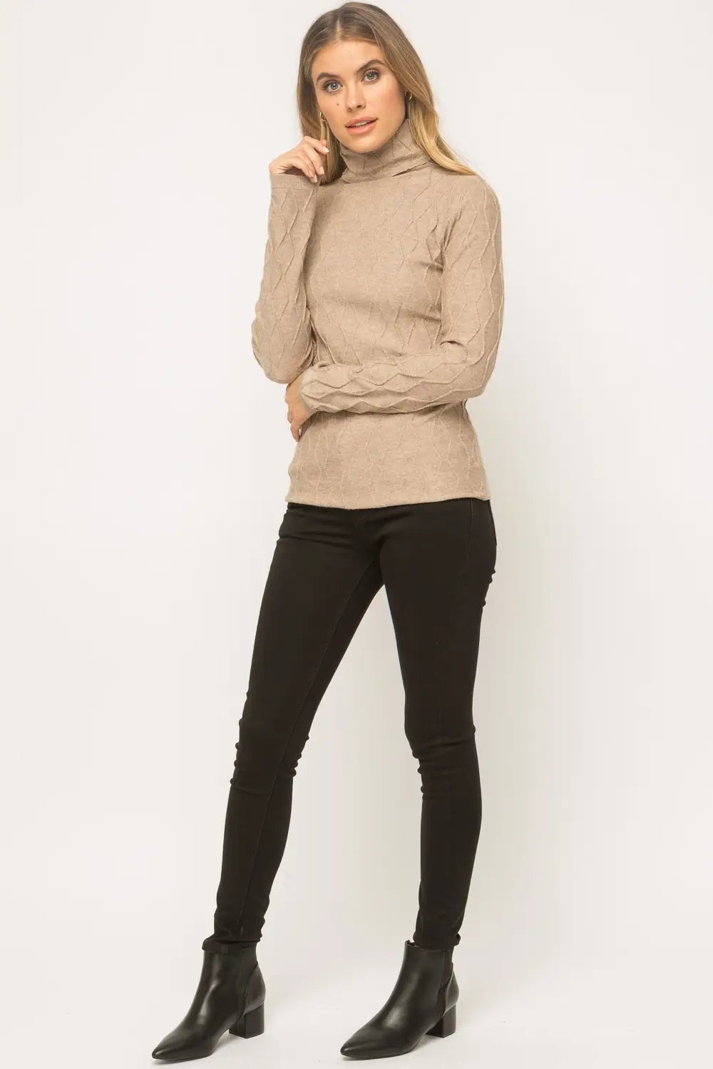 Taren  Taupe Textured Turtleneck Sweater