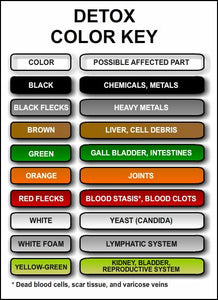 ionic cleanse color chart
